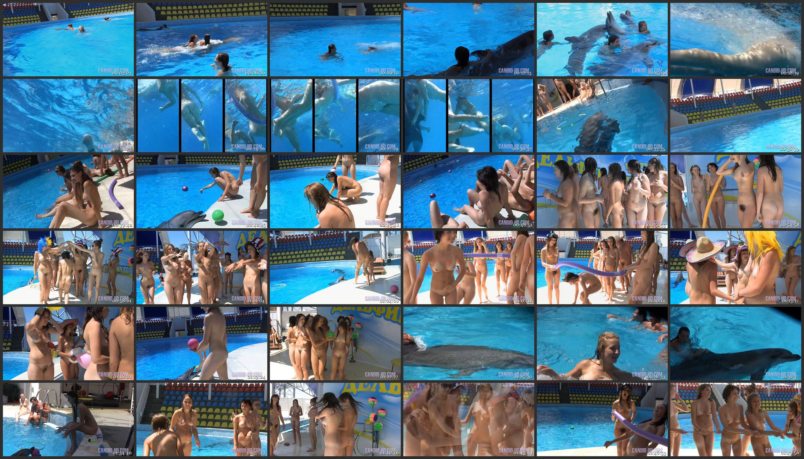 Amazing Dolphin Encounter - Thumbnails