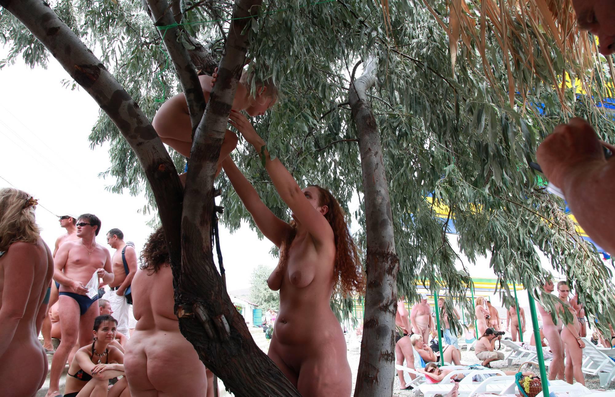 Neptune Her Tree Climbs - 2